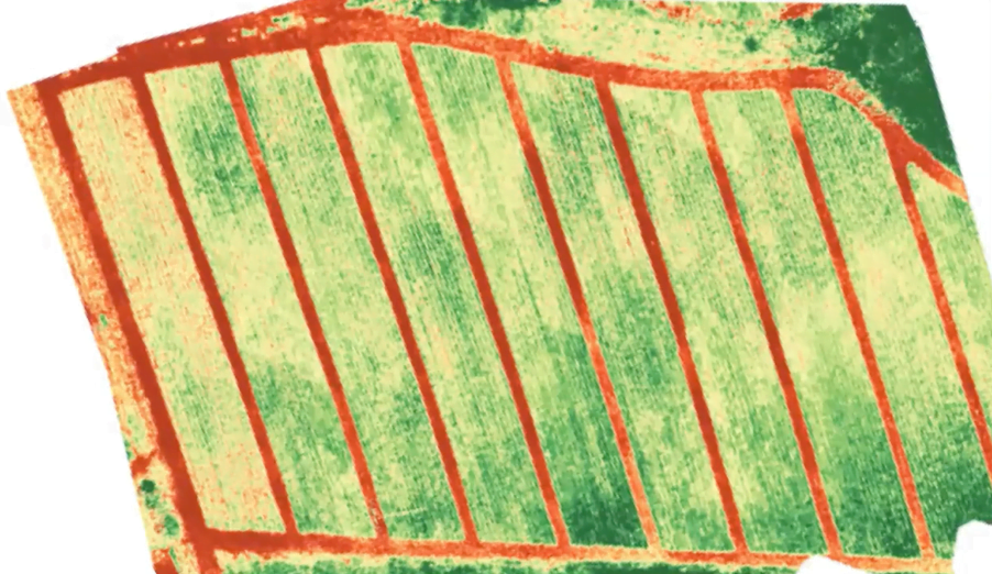 a geospatial mapping of a field using NDVI technology